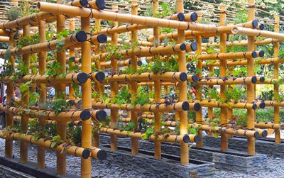 Bamboo gardens, inspiración asiática