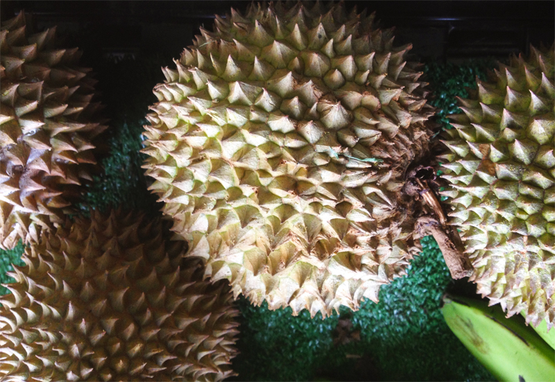 IMG_3665durian