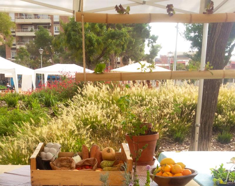 Huerto vertical de bambú handmade
